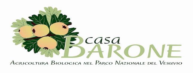 logo_casaBarone_quadr1